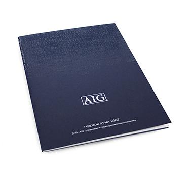 Годовой отчёт AIG 2007