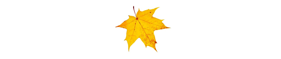 Дизайн с листьями